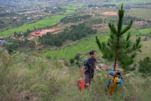 Falaise d'Ambohimanga, session de bolting au dessus des rizières 2