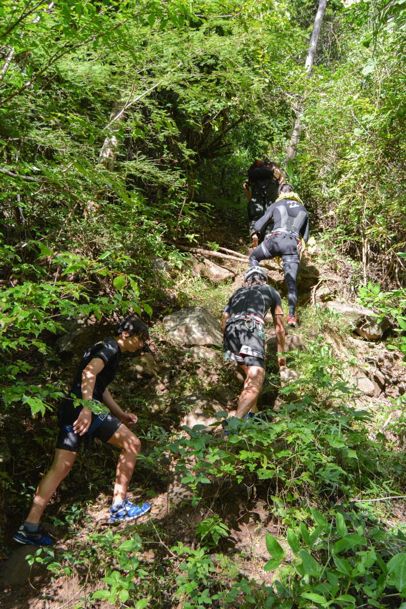 La rivière de la main, Antsiranana 56