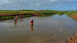 Begidro à Tsimafana, Tsiribihina, Morondava, Madagascar 5