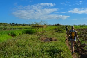 Begidro à Tsimafana, Tsiribihina, Morondava 11