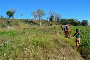 Begidro à Tsimafana, Tsiribihina, Morondava 56