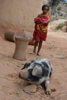 Sur la piste du Tsaranoro, Étape 1 - Sendrisoa à Ambalamanandray, Vallée de Namoly, Madagascar 22