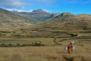 Sur la piste du Tsaranoro, Étape 2 - Vallée de Namoly au pied du pic Imarivolanitra, Madagascar 16