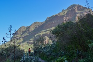 Barranco Agaete & Tamadaba, Gran Canaria 14