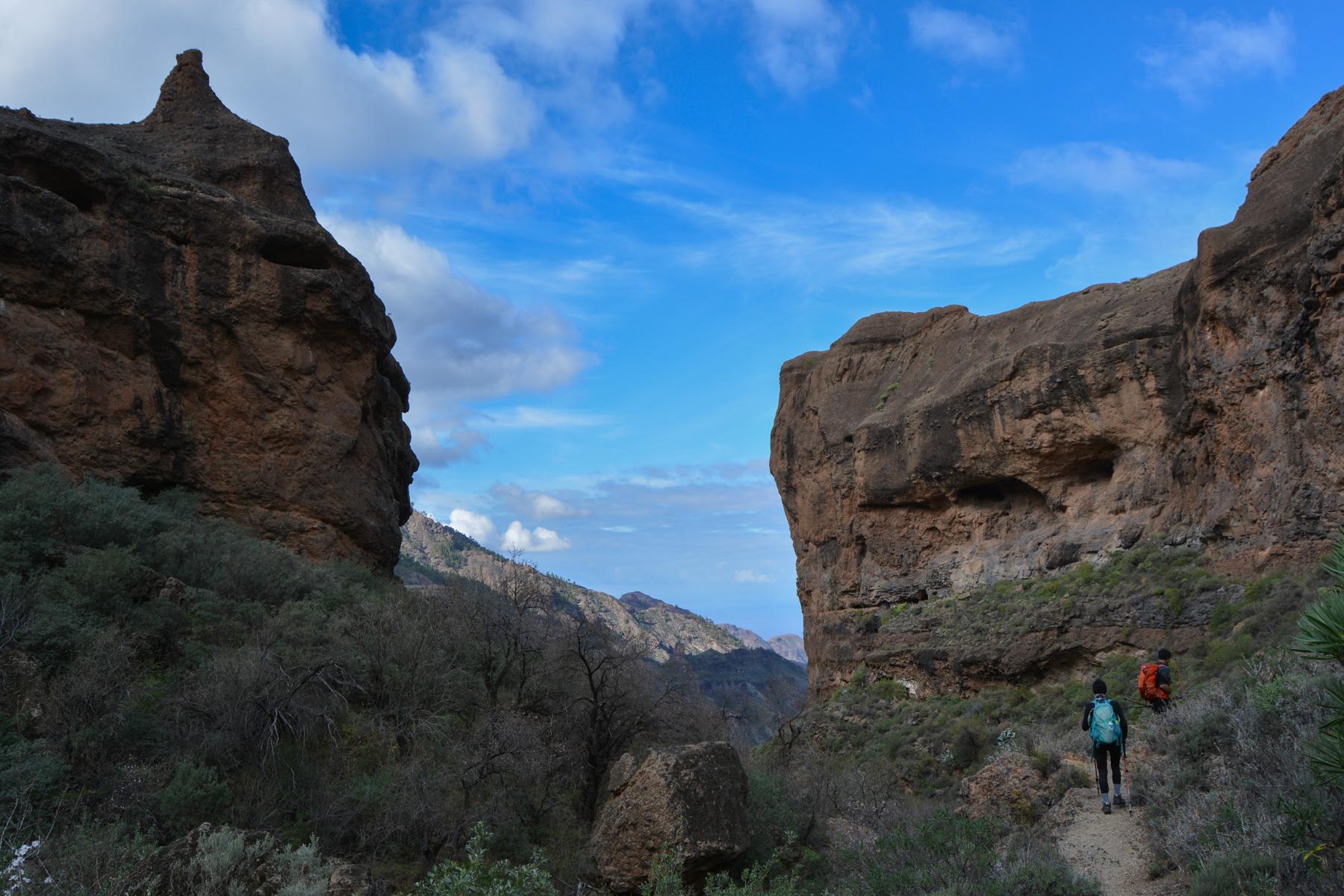 La Cañada de las burras, Gran Canaria, Espagne 21