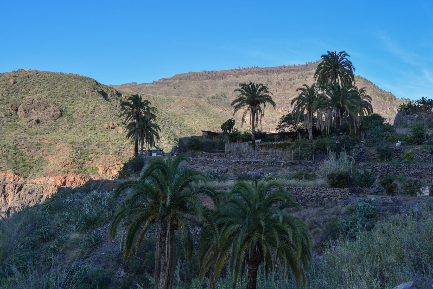Ayagaures, Gran Canaria, Espagne 8