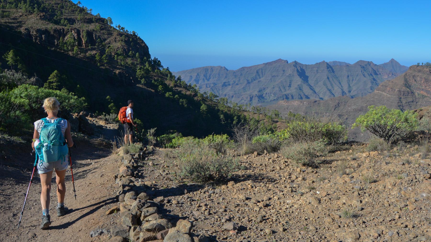 Montaña de Tauro, Gran Canaria, Espagne 16