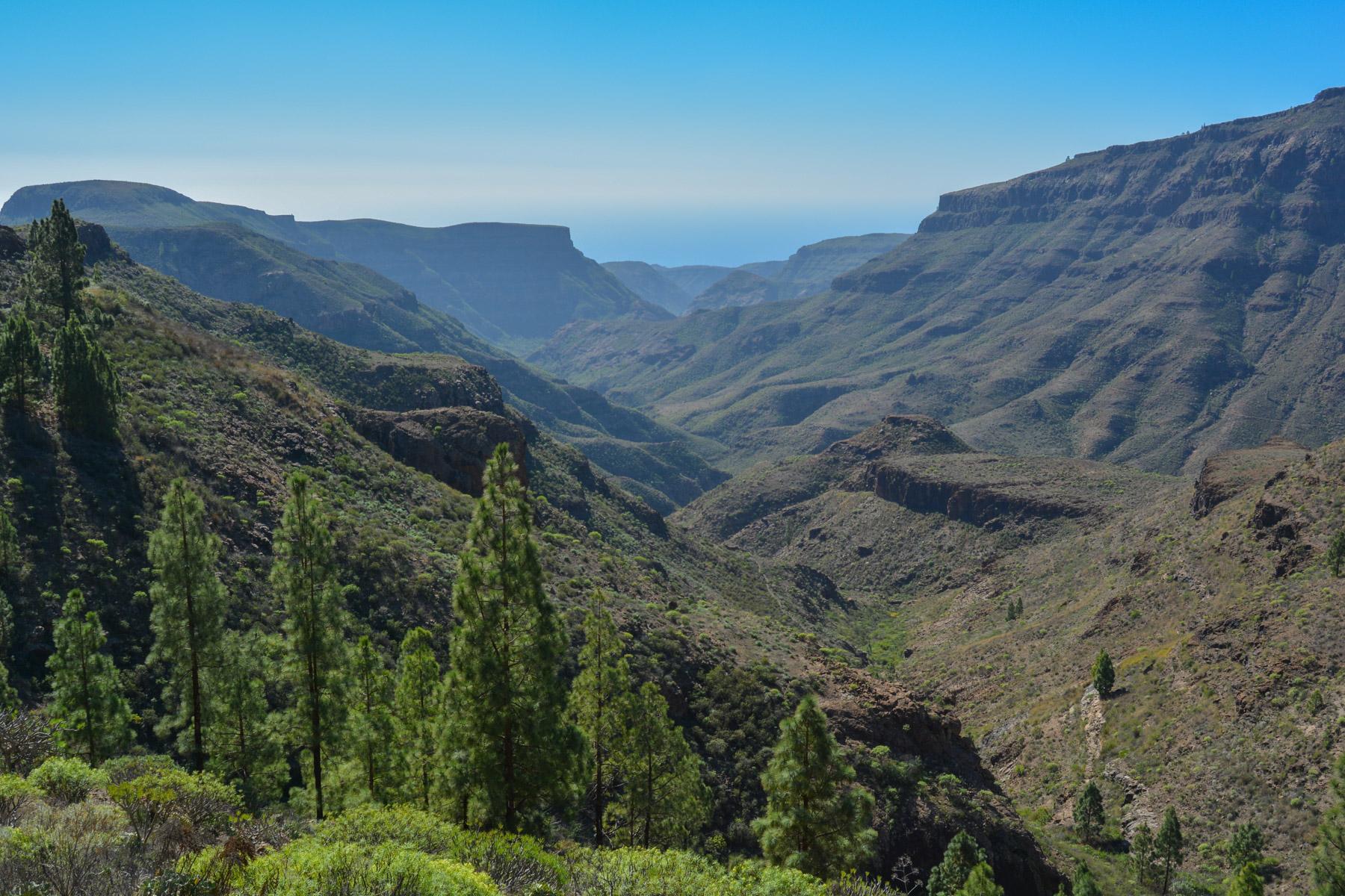 Montaña de Tauro, Gran Canaria, Espagne 26
