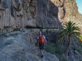 Montaña de Tauro, Gran Canaria 44