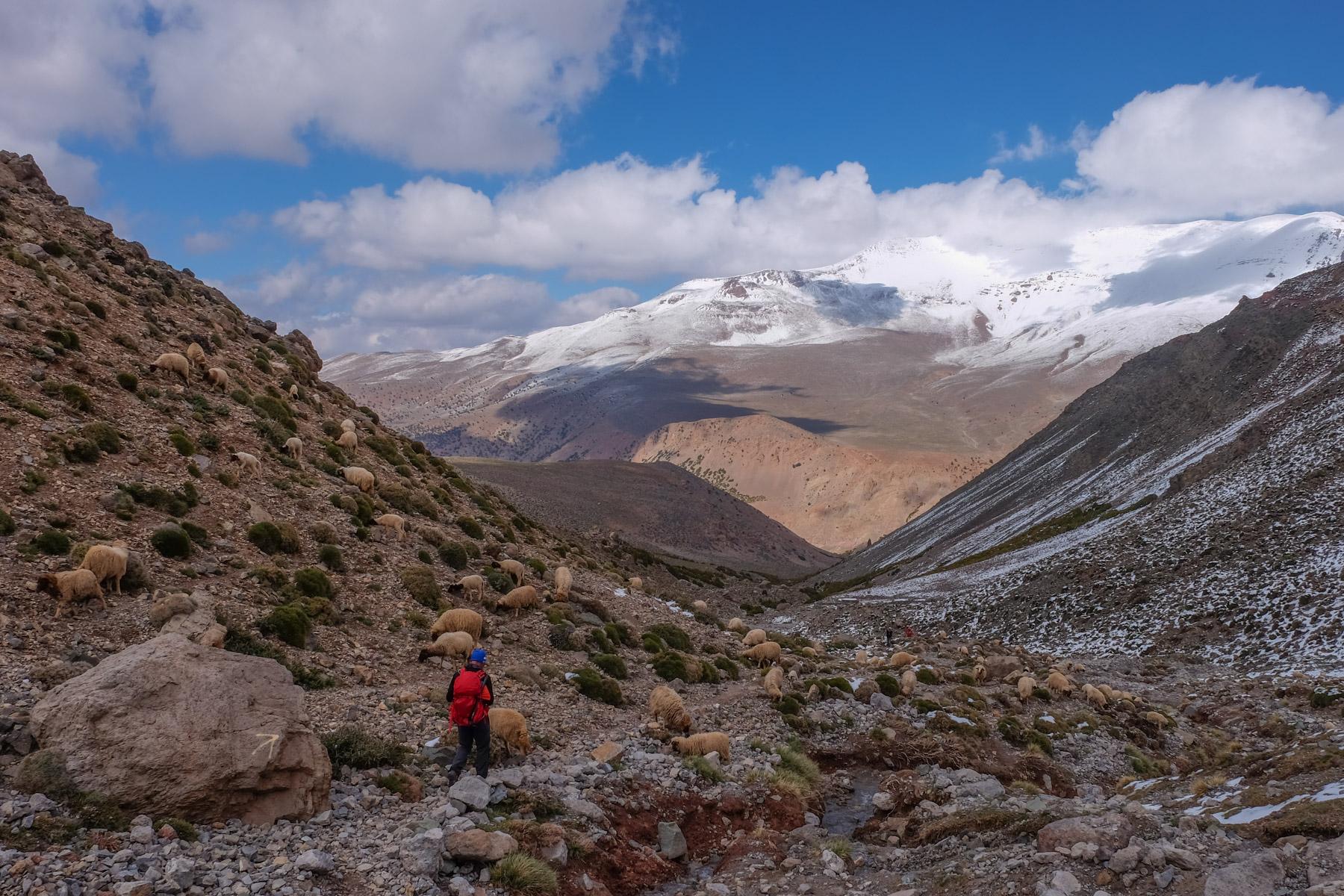 Jebel M'Goun, Ait Bouguemez, Maroc 57