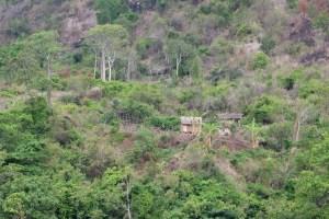 La vallée d'Antongombato, Joffreville 27
