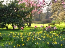london-spring-pic
