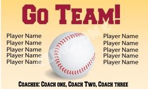 Go-Team-Baseball-beige-3x5