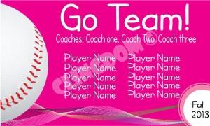 Go-Team-Sport-Baseball-Pink