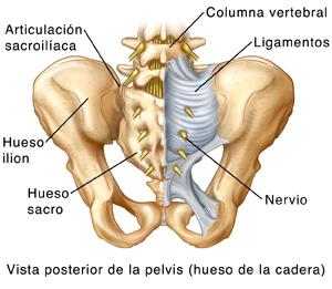 Las causas de los dolores en los riñones y la espalda