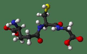 Glutatión, potente antioxidante que nos protege de la oxidación celular.