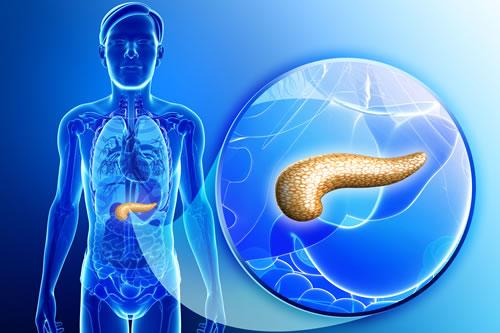 Un estudio detecta acumulaciones del colesterol libre o éster en líneas celulares del tumor, lo que sugiere una relación entre su extensión y la esterificación del colesterol.