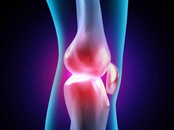 La principal novedad es la incorporación de una esponja biodegradable que, junto con un sistema de anclaje al hueso subcondral, fija el implante en el lugar de la lesión.
