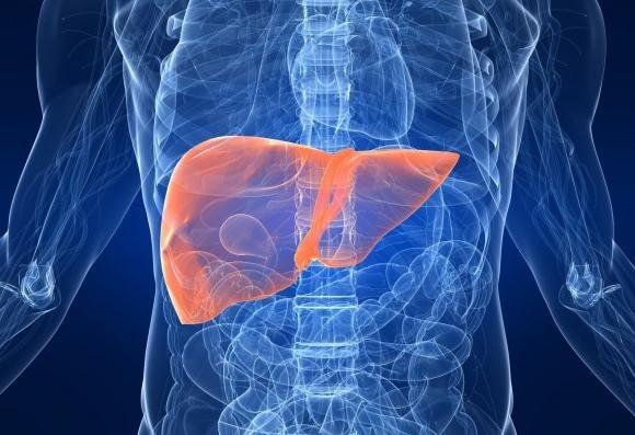 Un estudio muestra que los pacientes con hígado graso no alcohólico experimentan trastornos respiratorios del sueño más graves y sus puntuaciones del índice de apnea son significativamente mayores.