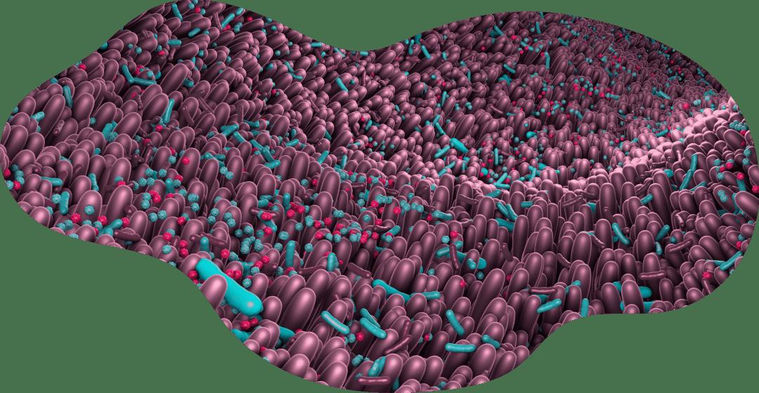 microbioma uterino