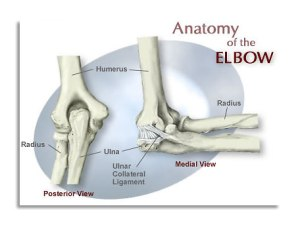 Case 2 Wrist fractures | Clinical Anatomy1 Cases