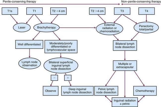 hpv penile cancer prognosis