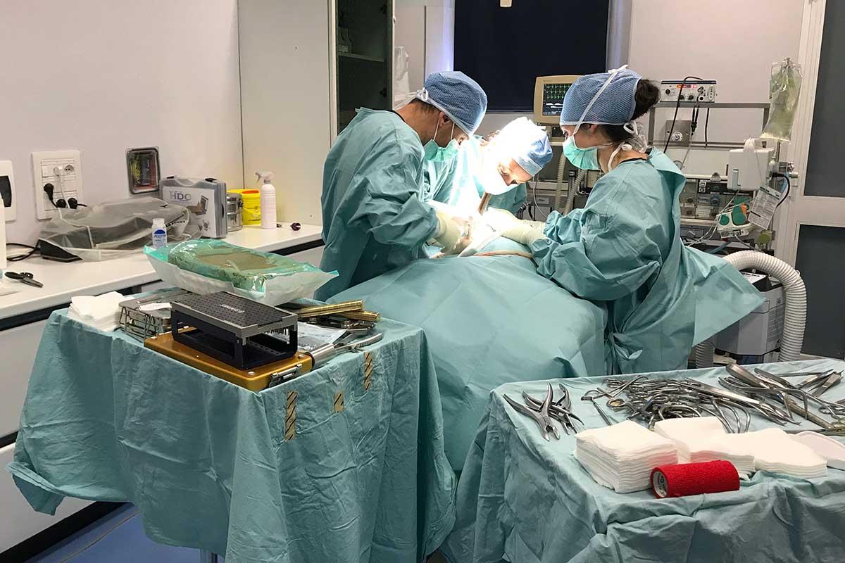 Chirurgia_01_1200x800