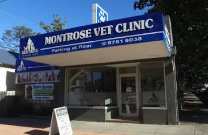 Montrose Veterinary Clinic Houston