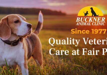 Buckner Animal Clinic