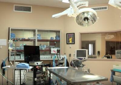 Northview Animal Clinic