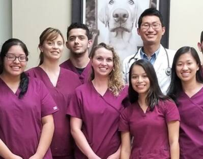Nordahl Pet Clinic Team