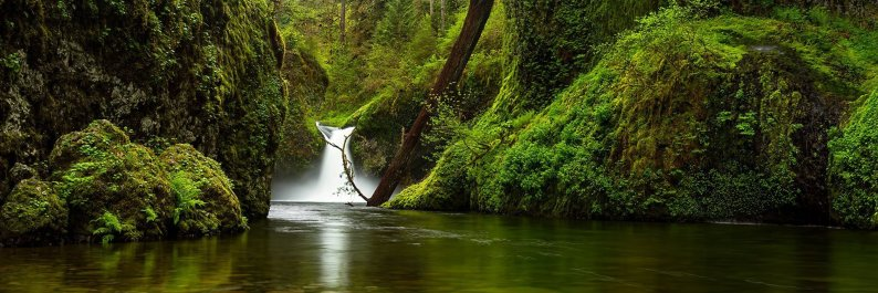 Punchbowl Falls Waterfall Spring Panorama-Columbia River Gorge Panoramic Photography