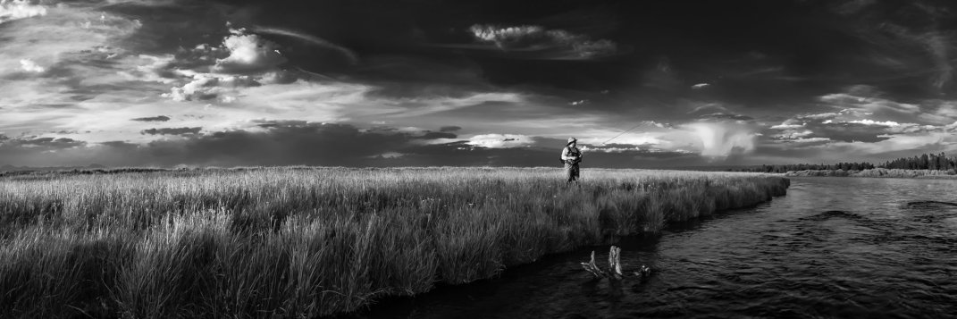 Patience - Fine Art Panoramic Photography