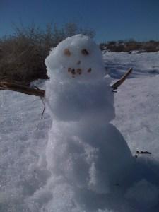 Rare Andean Snow Beast