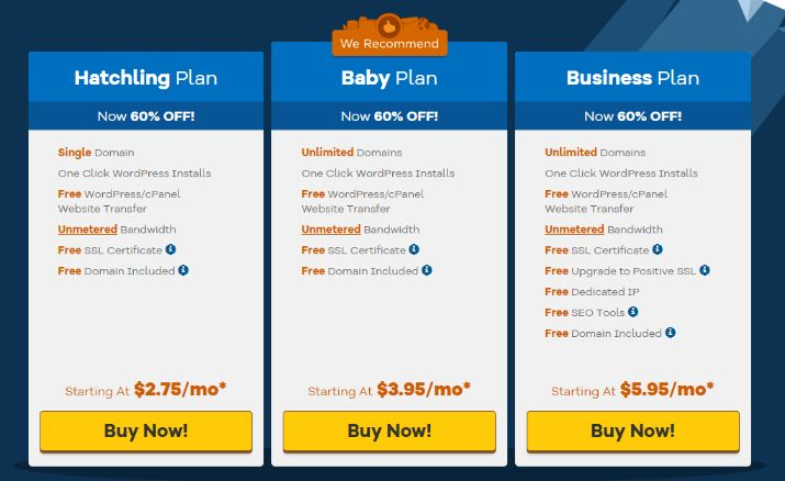 Shared Hosting started with $2.75 per month (60% off)