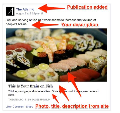 Link your content in social media post to get massive exposers.