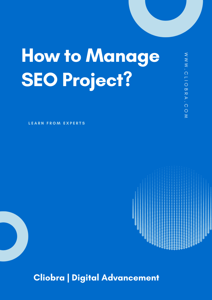 6 Smart Steps: How to Manage Your SEO Project (Practical Guide)