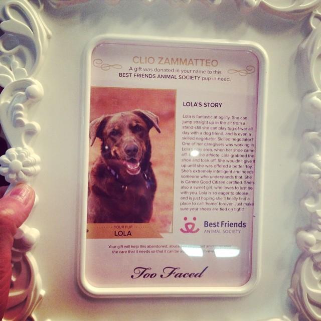 Questa è lola, la cagnolona che Too Faced ha adottato a distanza a nome mio per un anno!