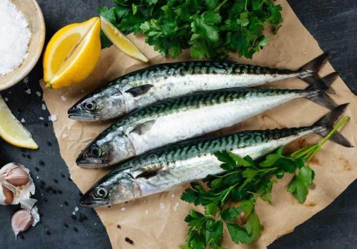cliomakeup-dieta-ipocalorica-12-omega-3-pesce-azzurro