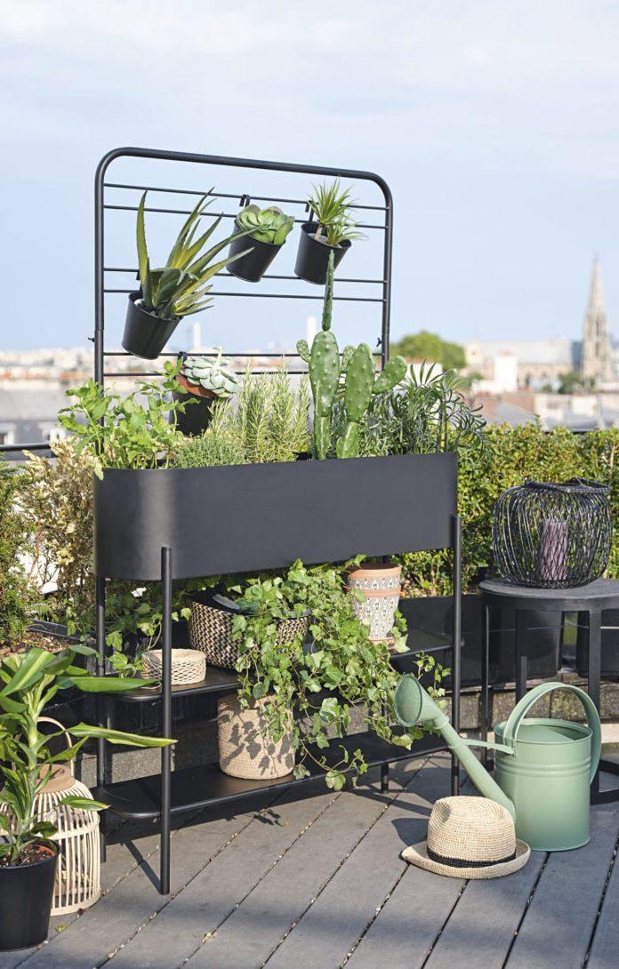 cliomakeup-maisons-du-monde-estate-2020-6-piante