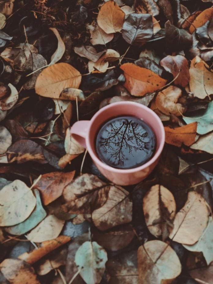 Cliomakeup-dieta-d-autunno-16-tazza