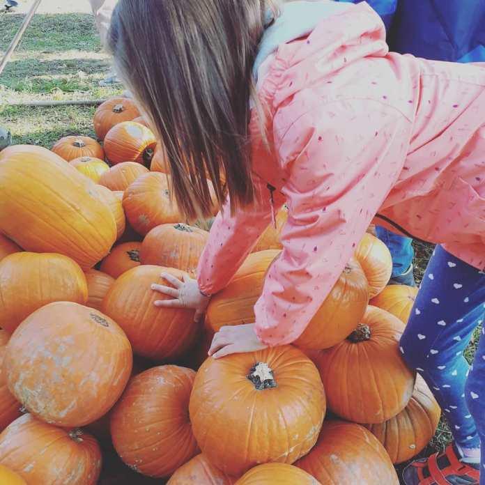 cliomakeup-viaggi-halloween-bambini-2020-6-campofiorigalbiate