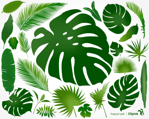 monstera svg