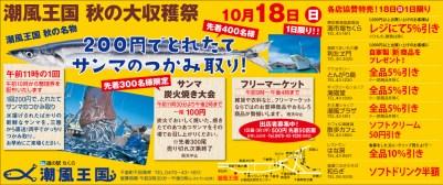 CL381_潮風王国広告