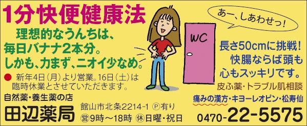 CL386_田邉薬局