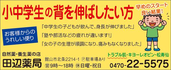 CL388_田邉薬局