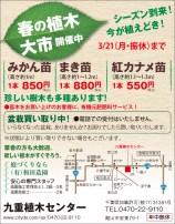 CL390_和田造園