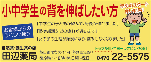 CL390_田邉薬局