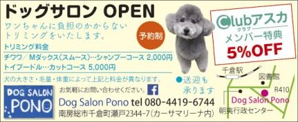 410_dog_Salon_Pono