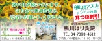 422_kamogawa_harikyu